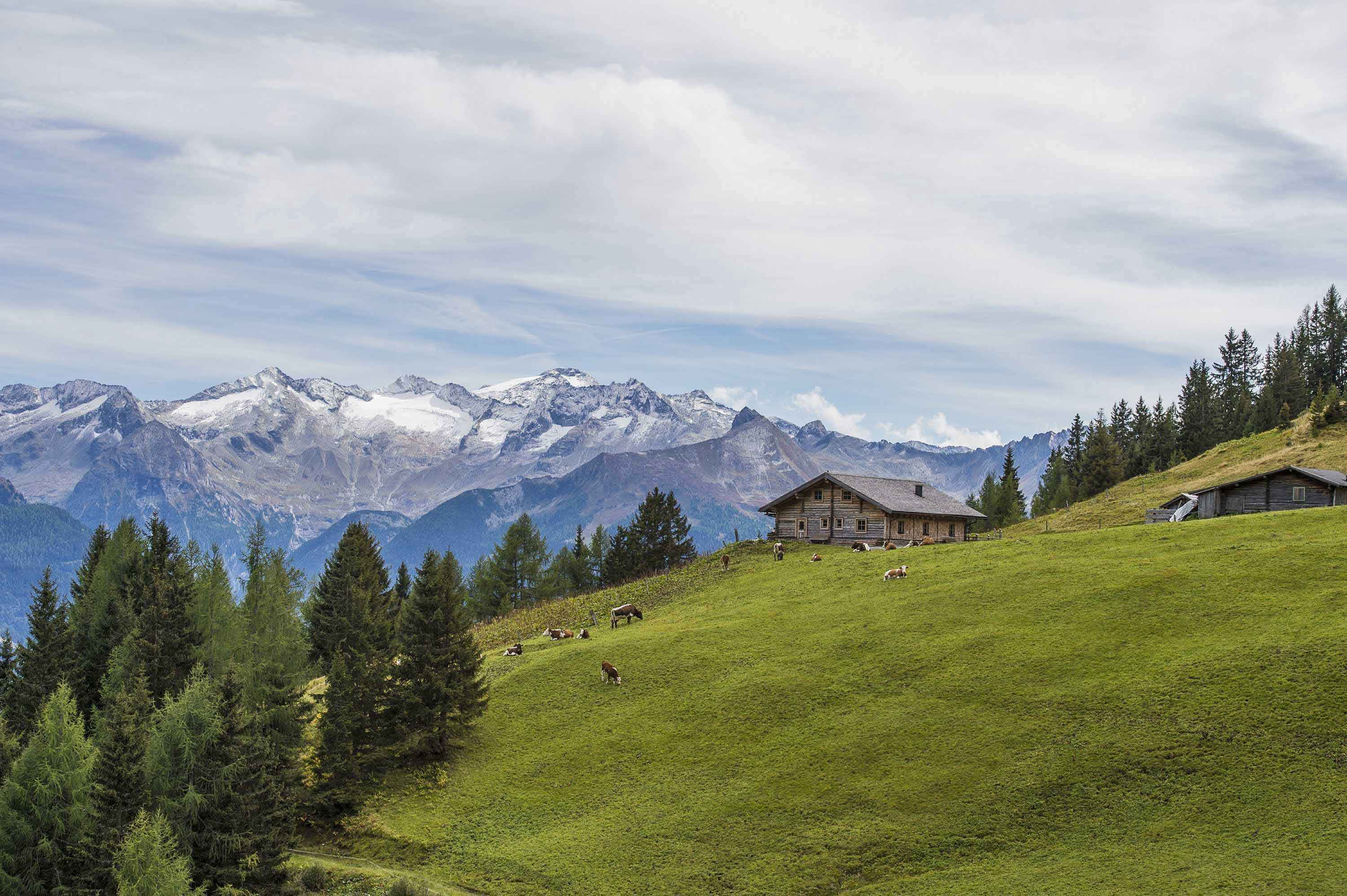 Family holidays in Bad Hofgastein